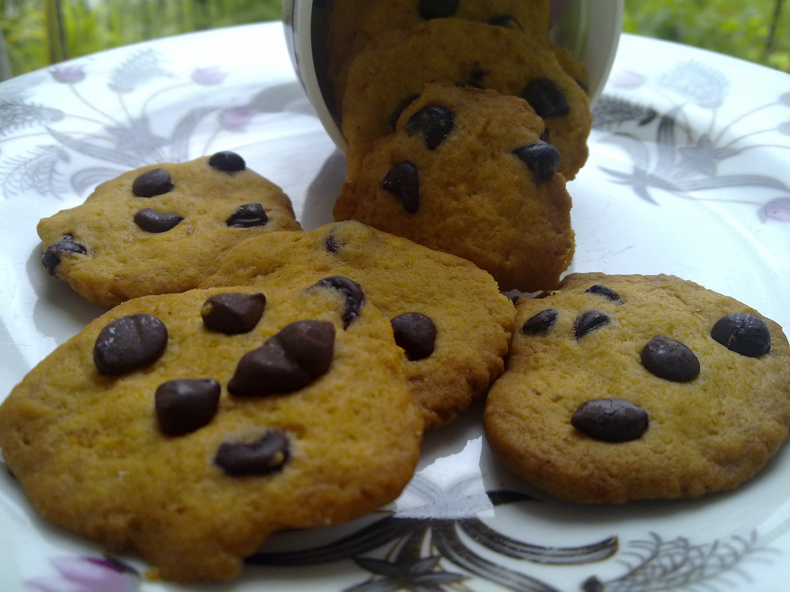 Favorite Cookie Recipe: Chocolate Bean Oaties_How to bake_cook_make_recipe_ingredient