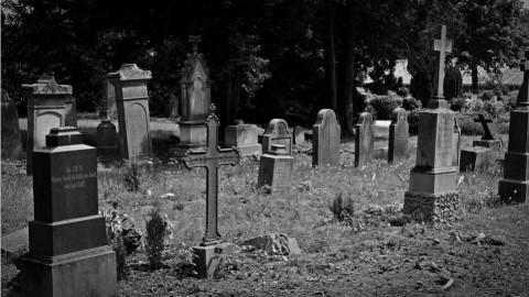 'Let The Dead Bury The Dead'