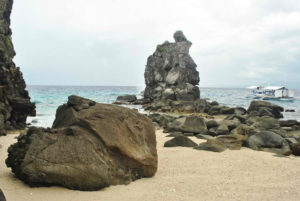 002-apo-island-rock-formation NO. 5