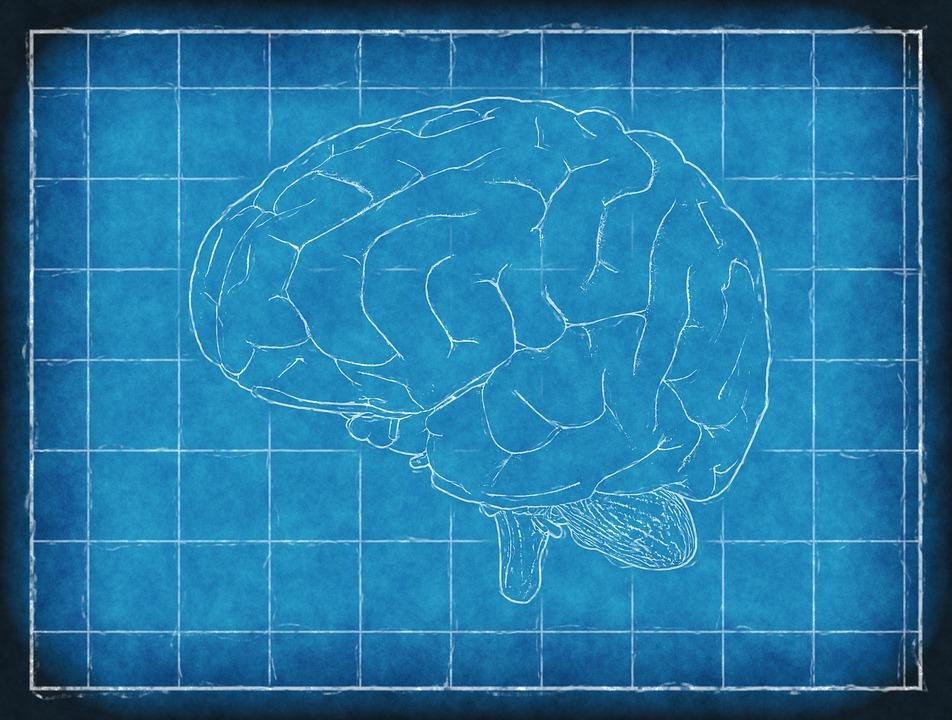 UNDERSTANDING THE PROGRESSIVELY PARKINSON'S DISEASE - LiteracyBase