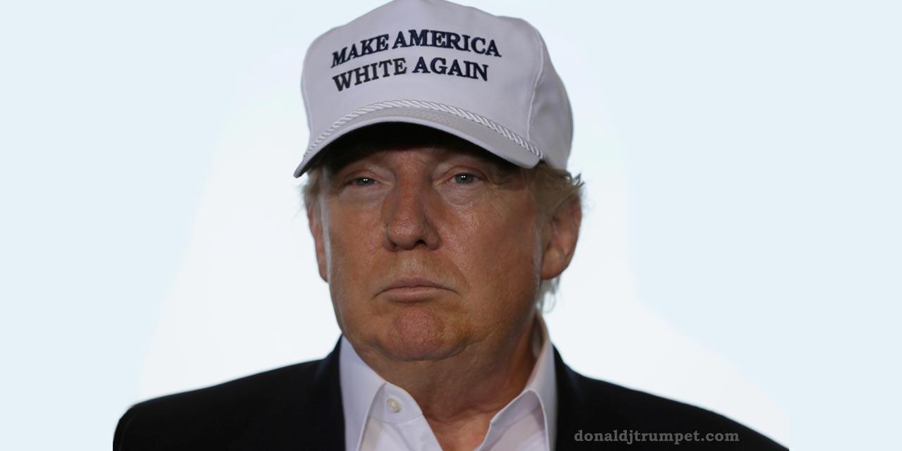 Trump in hat - Make America White Again