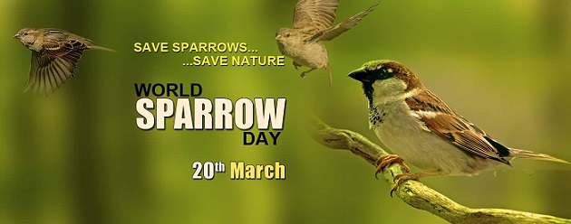 Save-Sparrows-Save-Nature-World-Sparrow-Day-20th-March