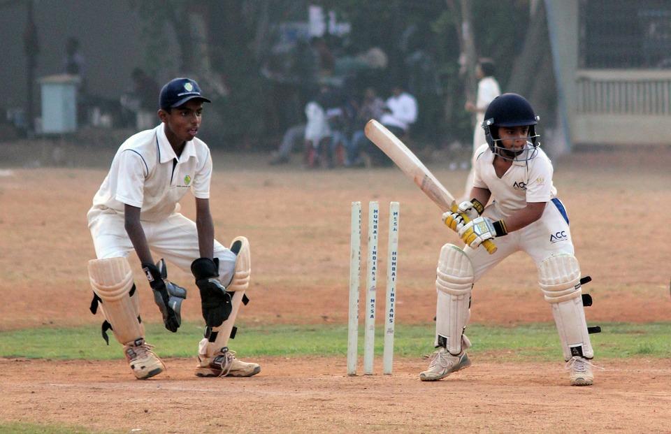 cricket-166794_960_720