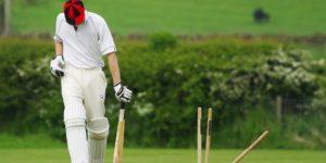 cricket-724616_960_720