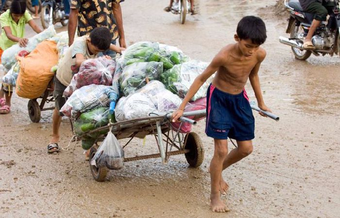 child labour in india causes concerns how to stop literacybase