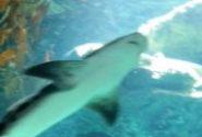 Profile picture of beata